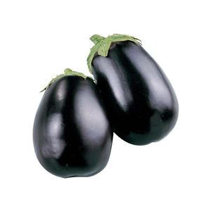 Eggplant Small Organic UAE 500g