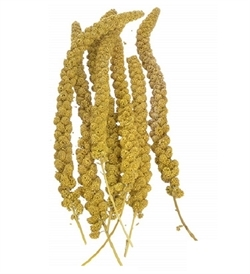 Pado Yellow Millet Spray 250g