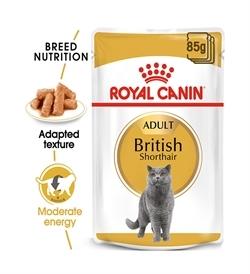 Royal Canin British Shorthair 85gx12
