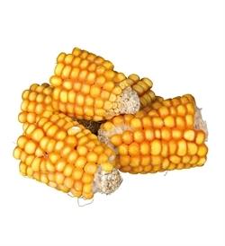 Trixie Pieces Of Maize Cobs 300g