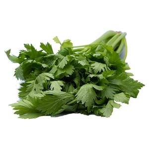 Organic Celery 250g