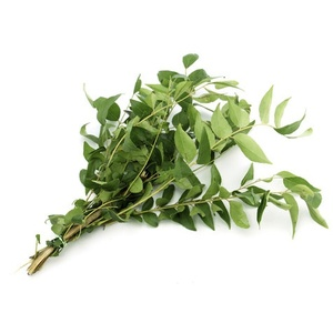 Curry Leaves Srilanka 1kg