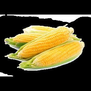 Sweet Corn Iran 500g
