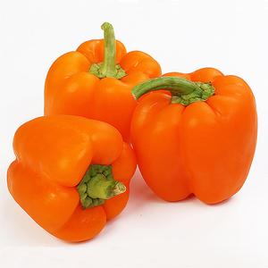 Capsicum Orange Organic 500g