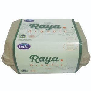 Lactio Raya Organic Eggs 10pcs