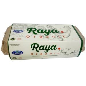 Lactio Raya Organic Eggs 6pcs