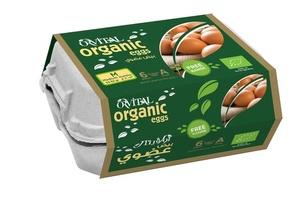 Organic Free Range Eggs 6s