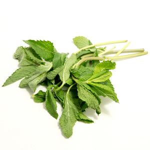 Organic Mint Kenya PP 1pack