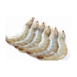Shrimp Jumbo Defrosted 20/30 1kg