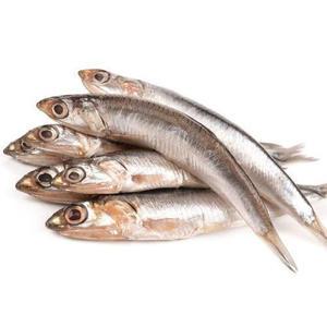 Anchovy Fish Fresh 500g