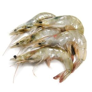 Shrimps30/40 Fresh 1kg