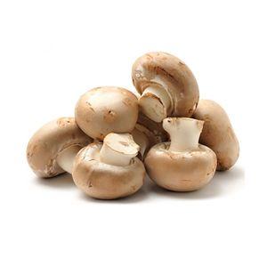Mushroom Brown Holland 500g