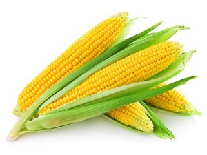 Sweet Corn 500g