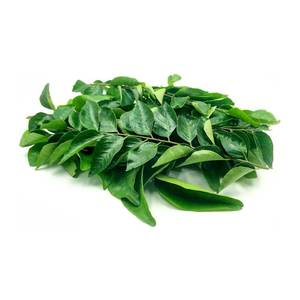 Curry Leaves India 1bundle