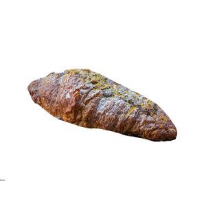 Pistachio Croissant 1pc
