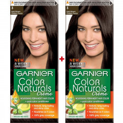 Garnier Color Naturals Brown 2pc