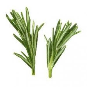 Organic Rosemary 1pack