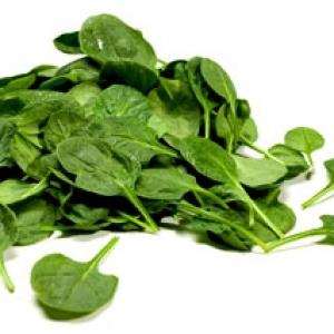 Organic Spinach Baby 100g
