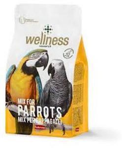 Padova Welness Parrots 750g