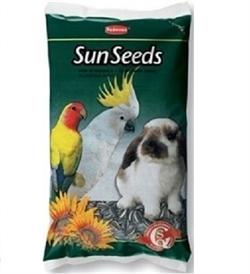 Padovan Medium Sun Seeds 500g