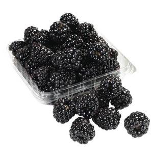 Blackberry Driscolls USA 170g pkt