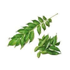 Curry Leaves Kg 500g