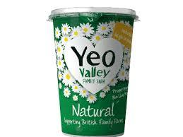 Yeo Valley Wm Natural 500g