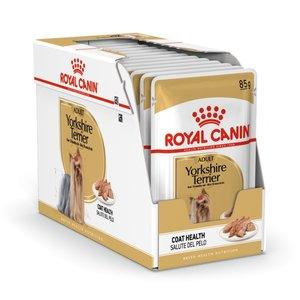 Royal Canin Wet Food Bhn Yorkshire 85g