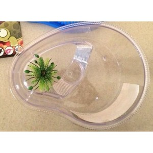 Kwzone Turtle Tank Without Cover Tt320 1pc