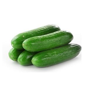 Fresh Cucumber (Salatalik) 500g