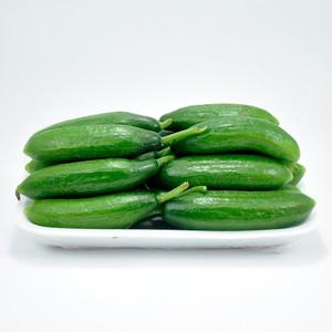 Fresh Cucumber Cengelkoy (Salatalik cengelkoy) 500g