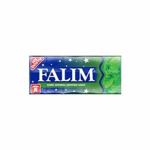 Sugar Free Mint Gum (Nane Aromali Sekersiz Sakiz) 7g