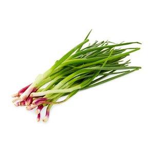 Onion Spring UAE 1bunch