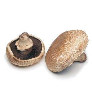Portobello Mushroom 500g