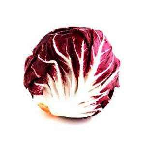 Red Lettuce Netherlands 200-300g