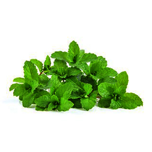 Mint Leaves UAE 50g