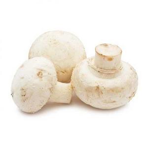 Mushroom Oman 1pkt