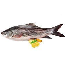Sherry Fish 500g