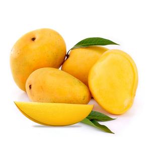 Mango Alfonso India 500g