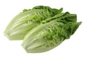 Lettuce Jordan 500g