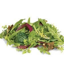Mesculin Salad Mix Holland 1pkt