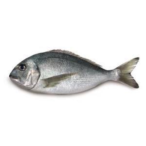 Sea Bream 400-600 Tunisia 1kg