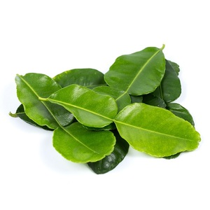 Lime Leaves Holland 50g