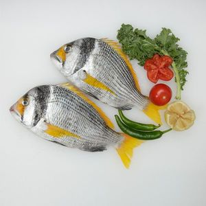 Wild Yellow Sea bream Fresh Cleaned UAE 500g