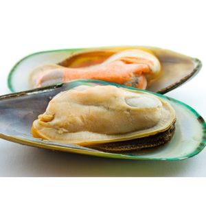 Mussels Half Shell Frozen New Zealand 1kg