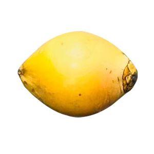 King Coconut Srilanka 1kg