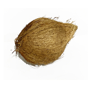 Coconut Dry India 600g-800g pc
