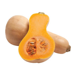Butternut Pumpkin South Africa 1kg-1.2kg pc