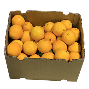 Orange Navel Australia 16.5kg-17.5kg