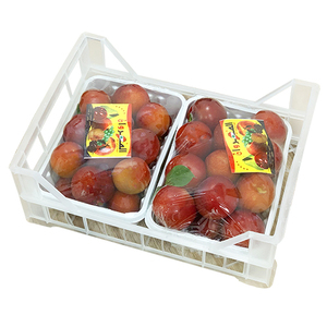 Red Plums Lebanon 1.4kg